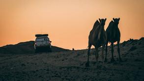 A partire dal 2026 tutti i veicoli alla Dakar saranno ad idrogeno