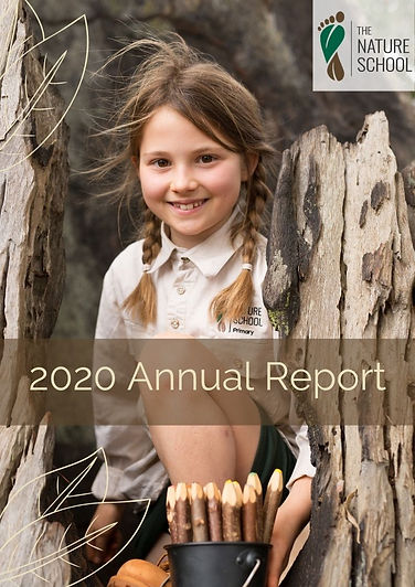 Annual Report 2020 cover (1).jpg