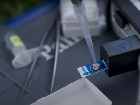 Nitrate sensor field Demo