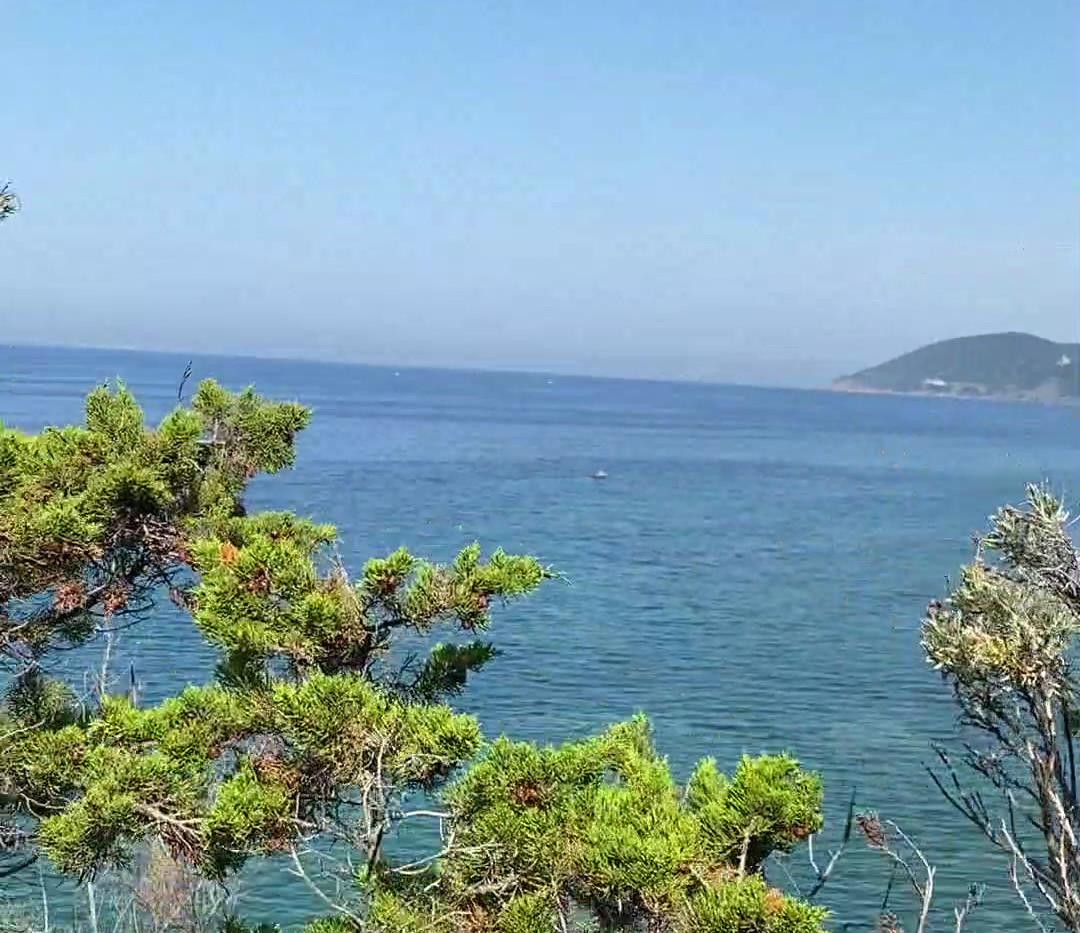 vista parco villa scesa al mare