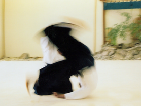 Aikido: Existing in Harmony©  (adapted from my forthcoming book, Widening Your Lens.)