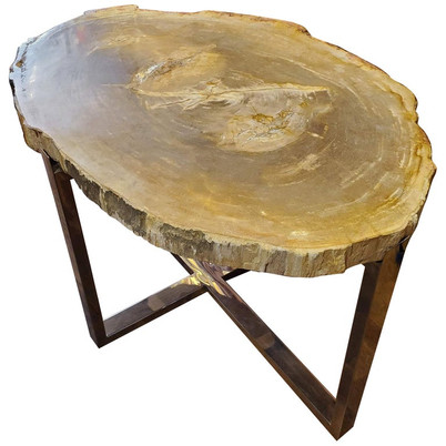 Organic Modern Petrified Wood Table with Chrome Base