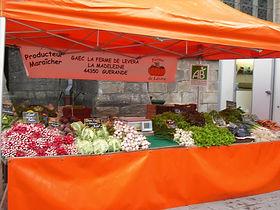 légumes bio sur guérande, paniers AMAP,