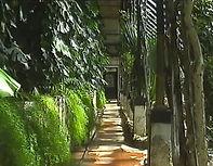 Падуя Ботанический сад