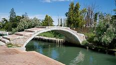 ostro-torcello-ekskursii-po-venecii