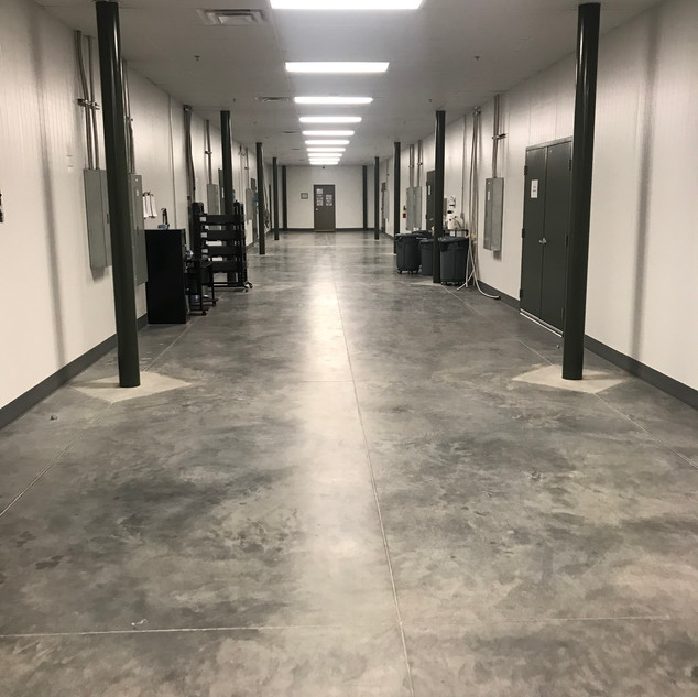 Circle S Farms hallway - spotless