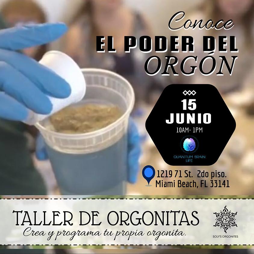 TALLER DE ORGONITAS