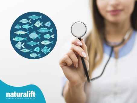 Doktorların ve Uzmanların Önerdiği Balık Kolajeni!