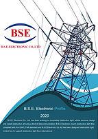 profile BSE.jpg