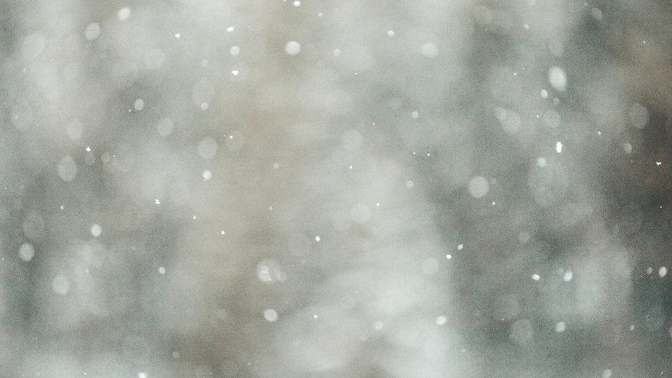 winter bg.jpeg