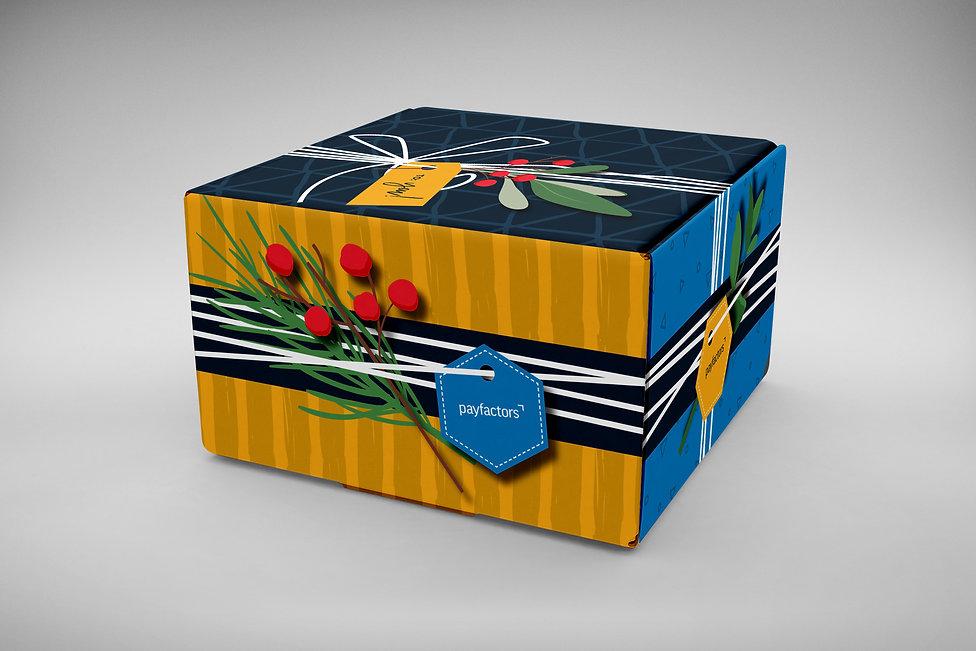 Payfactors Holiday Packaging Design.jpg