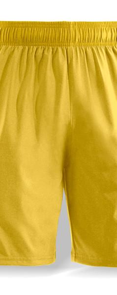 REEF Shorts.jpg