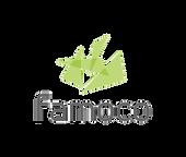 famoco_logo_rbg_edited.png