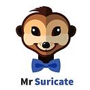 Mr Suricate.png