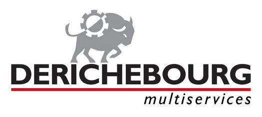 DERICHEBOURG_Logo.jpg