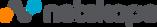 netskope_logo.png