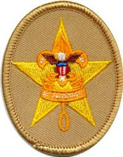 Star Scout