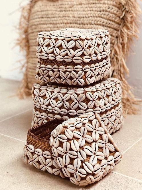 Shreveport kagyló dobozok