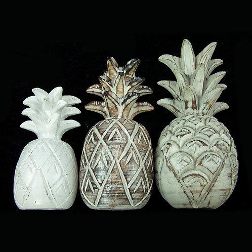 Berkeley fehér ananász