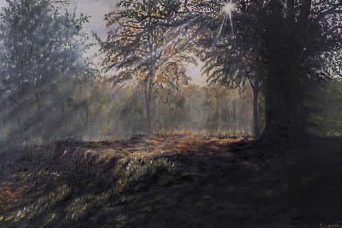 Julianna festmény - Light beam forest