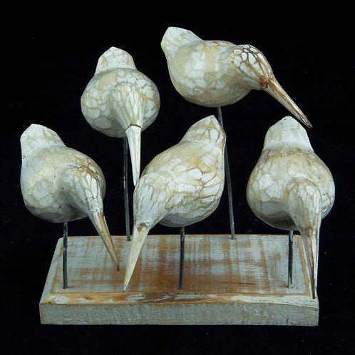Denton madárkák