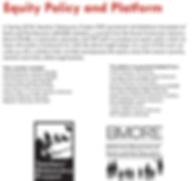 Equity Platform.PNG
