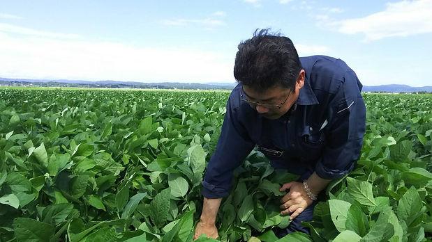 農業写真.JPG