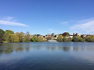 The Clynt. Open banks of the Mere.jpg