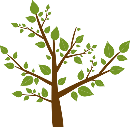 Tree%2520Leaves_edited_edited.png