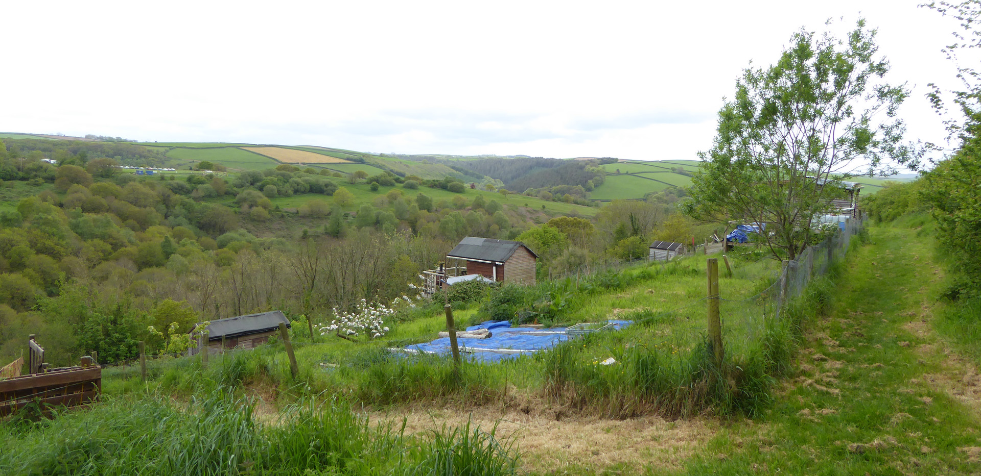 The allotments Cromwells lookout