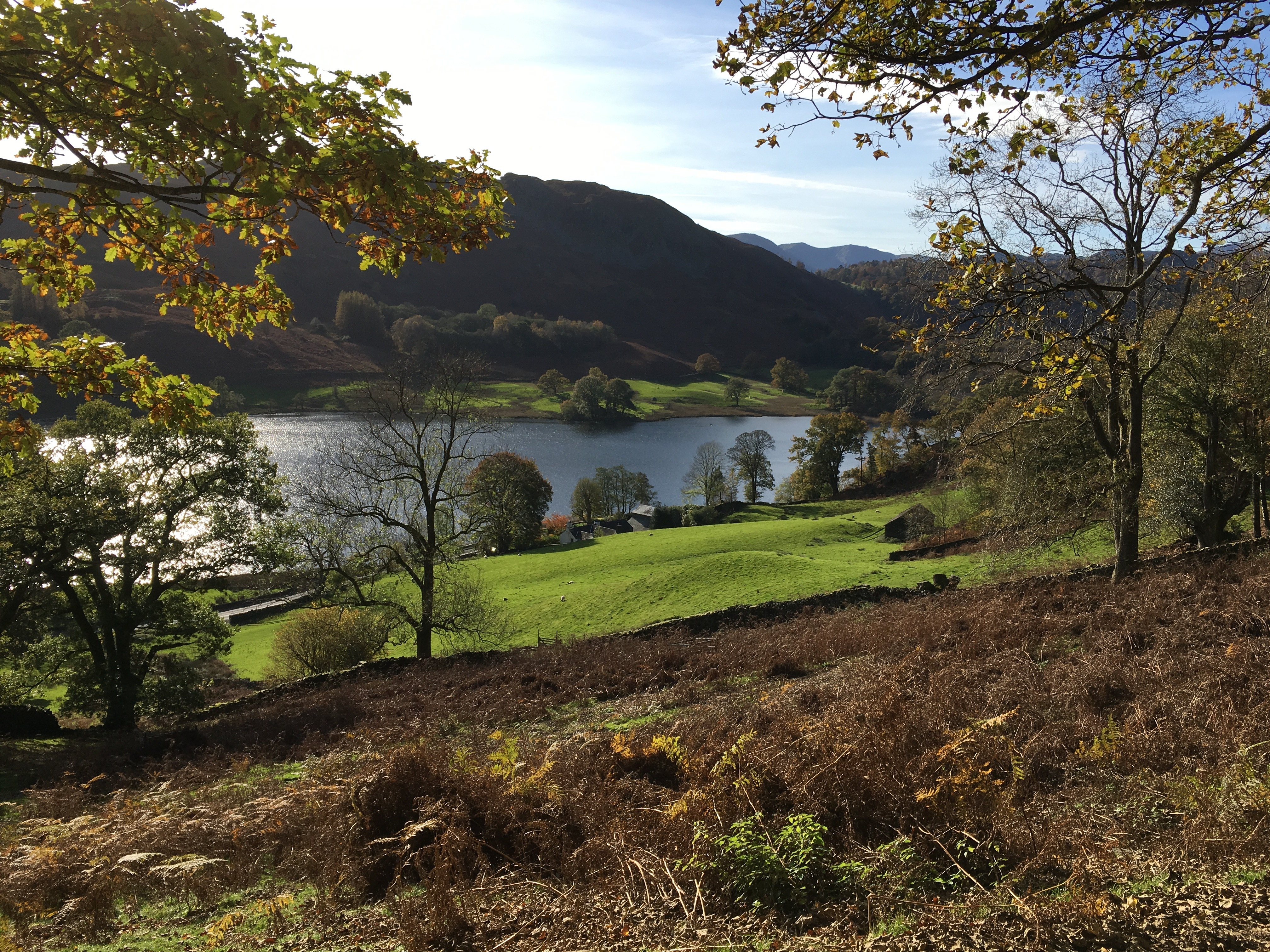 views over Rydal Water