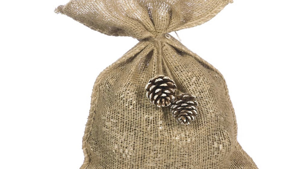 Bag of Cinnamon Scented Pine Cones