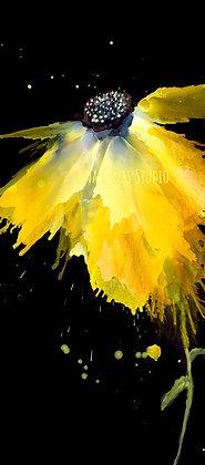 Mellow Yellow 12 x 24 FF Print