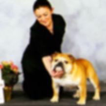Pelee Bulldogs | Breed Conformation | Arrow