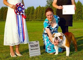 Pelee Bulldogs | Champion Bulldogs | Our Champions