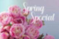 Spring Special.jpg