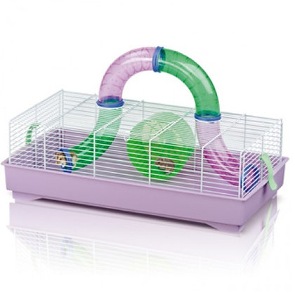 Imac - Play time Hamster cage