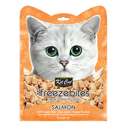 Freezebites Dried Salmon 15g