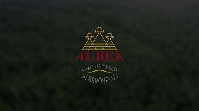 世界遺産「アルベロベッロ」の街で地ぶどうの良さを伝えたい