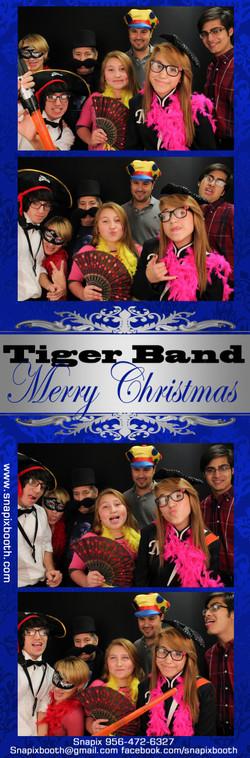 Tiger Band.jpg