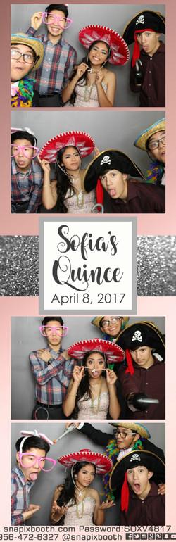 Sofia's Quince