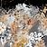 ED14E30C-3BAD-4089-8B0C-A052B0A83D63.png