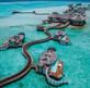Dubai & Maldives Escape  On Sale Now with GoWay