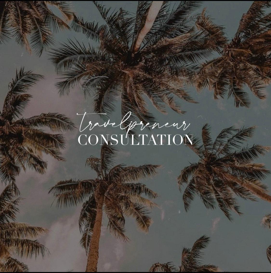 Travelpreneur Consultation