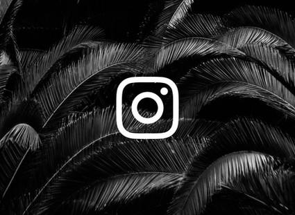 3 Ways To Crack The Instagram Algorithm & Increase Engagement