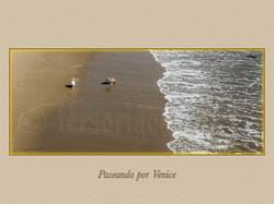 VENICE 040