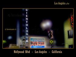 Hollywood Blvd,