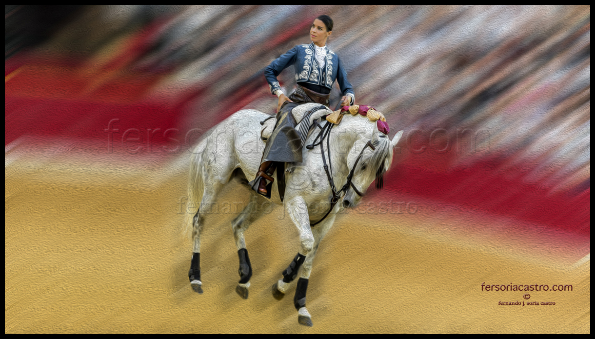 web caballos 05