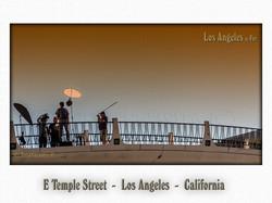 E Temple Street  -  Los Angeles