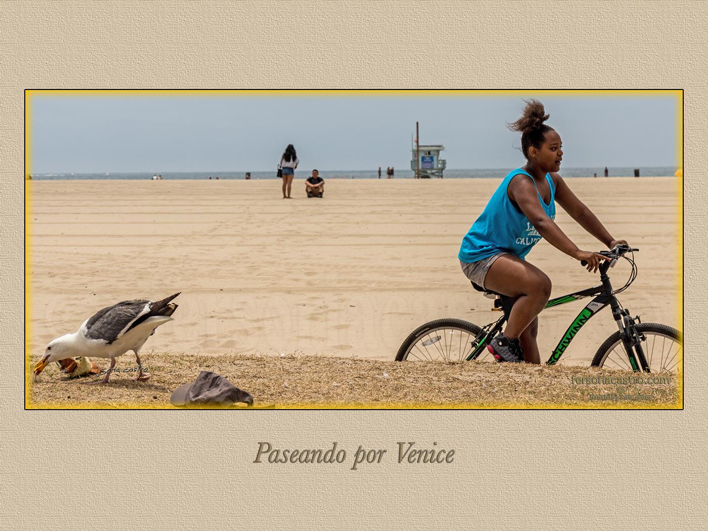 VENICE 015